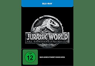 Jurassic World - Das gefallene Königreich (Exklusives Steelbook) Blu-ray