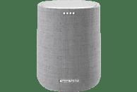 HARMAN KARDON Citation One Lautsprecher App-steuerbar, Bluetooth, Grau