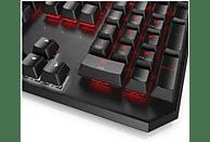 HP OMEN by Sequencer, Tastatur