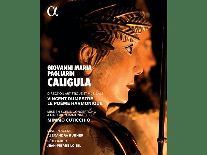 Jan Van Elsacker - Caligula [Blu-ray]