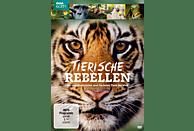 Tierische Rebellen - Die erstaunlichsten und frechsten Tiere der Welt [DVD]