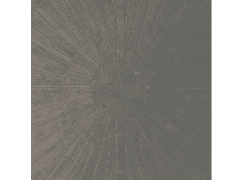 Basinski,William & English,Lawrence - Selva Oscura (Limited Colored Edition) [Vinyl]