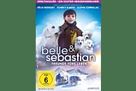 Belle & Sebastien - Das letzte Kapitel [DVD]