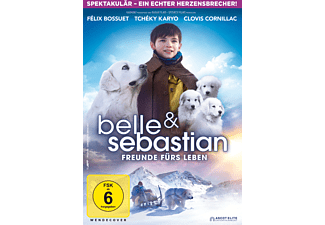 Belle & Sebastien - Das letzte Kapitel DVD