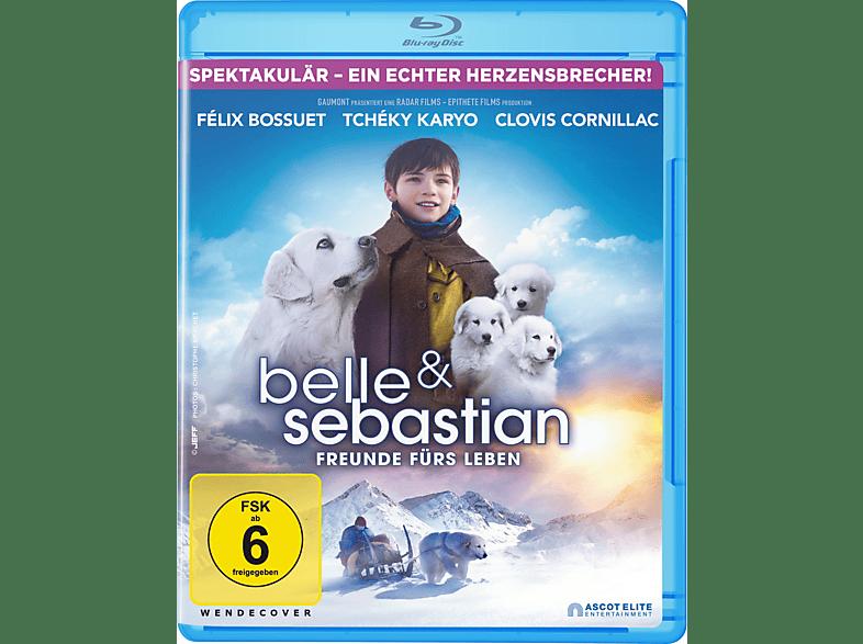 Belle & Sebastien - Das letzte Kapitel [Blu-ray]