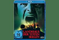 Landhaus der toten Seelen - Burnt Offerings [Blu-ray]