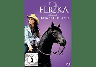 Flicka 2 - Freunde fürs Leben DVD