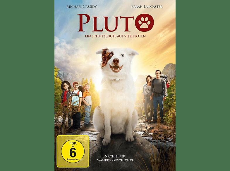 Pluto - Ein Schutzengel auf vier Pfoten [DVD]