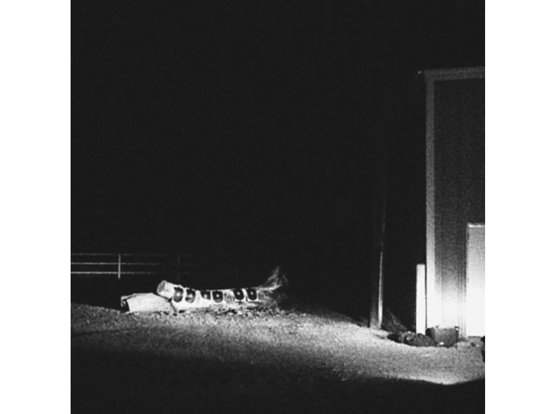 Cloud Nothings - Last Building Burning (LP+MP3) [Vinyl]