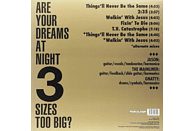 Spacemen 3 - For All The Fucked Up Children [Vinyl]