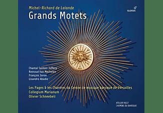 Schneebeli/Coll.Marianum/Les Pages & les Chantres - Grands Motets  - (CD)