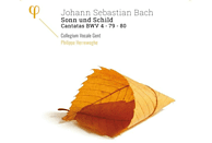 Dorothee Mields, Alex Potter, Thomas Hobbs, Peter Kooij, Collegium Vocale Gent - SONN UND SCHILD - CANTATAS BWV 4 - [CD]