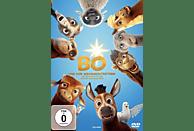 Bo und der Weihnachtsstern [DVD]