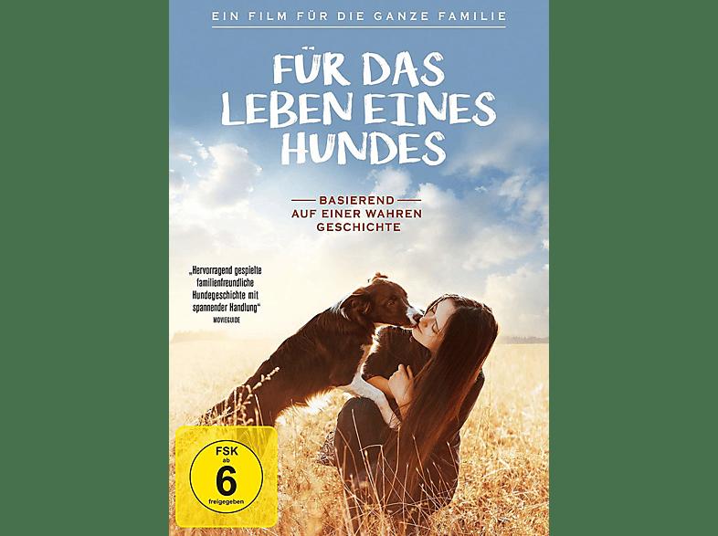Dog Lover - Vier Pfoten für die Wahrheit [DVD]