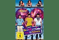Du und Ich und die Liebe - Pyaar ka Punchnama [DVD]