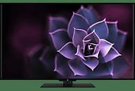 OK. ODL 55651U-TIB LED TV (Flat, 55 Zoll/140 cm, UHD 4K, SMART TV, Linux)