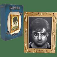 WOW! STUFF Harry Potter Holografische Leuchte Lampe, Grau/Gold