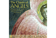 Gloriæ Dei Cantores Schola - The Chants of Angels [SACD Hybrid]