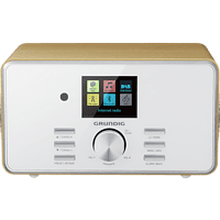 GRUNDIG DTR 5000 2.0 BT DAB+, Internetradio