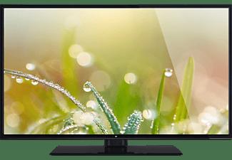 OK. ODL 40650UV-TIB LED TV (Flat, 40 Zoll / 102 cm, UHD 4K, SMART TV)