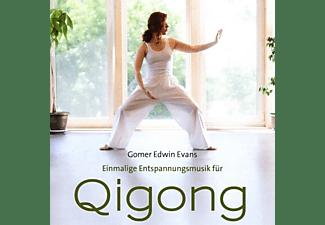 Gomer Edwin Evans - Qi Gong  - (CD)