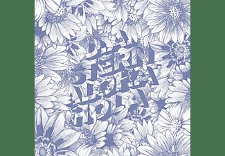 D.A. Stern - ALOHA HOLA  - (CD)