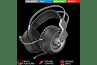 TRUST Gaming GXT 430 Ironn