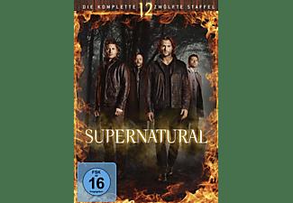 Supernatural 12 Staffel Auf Dvd Online Kaufen Saturn