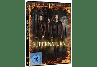 SUPERNATURAL - 12. STAFFEL DVD