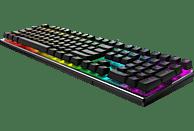 RAPOO VR700RGB, Gaming Tastatur, Mechanisch, Sonstiges