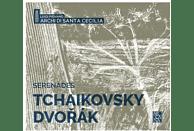 Luigi/archi Di Santa Cecilia Piovano - Sérénades [CD]