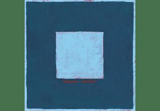 Pinegrove - Skylight  - (Vinyl)