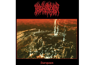 Blood Incantation - Starspawn (Picture Vinyl) - (Vinyl)