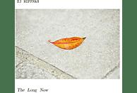 Sj Hoffman - The Long Now [Vinyl]