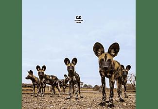 Balthazar - Fever CD