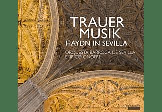 Doyle/Casal/Onofri/Orquesta Barroca Sevilla - Trauermusik im Andalusien des 18.Jh.  - (CD)