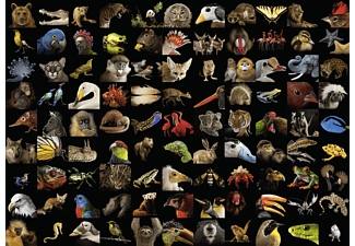 RAVENSBURGER 99 atemberaubende Tiere Puzzle Mehrfarbig