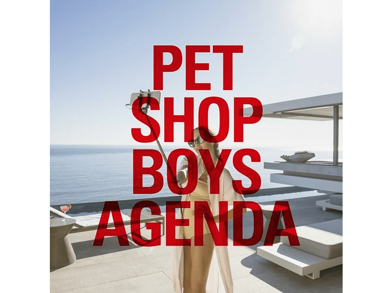 Pet Shop Boys - Agenda (12'') [Vinyl]