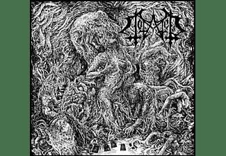 Totaled - Lament  - (CD)