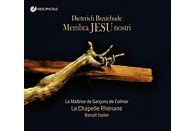 Haller/Steyer/La Chapelle Rhenane/La Maitrise - Membra Jesu Nostri BuxWV 75 [CD]