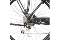 FISCHER - FAHRRAD ETH 1861.1 Trekkingrad (28 Zoll, 55 cm, Trekking Rahmen, 557 Wh, Schwarz matt)