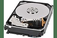 TOSHIBA N300 NAS, 12 TB HDD, 3.5 Zoll, intern