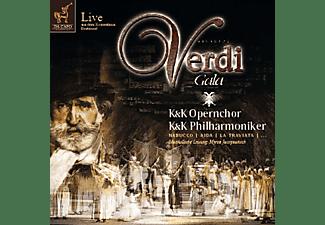 VARIOUS - Verdi Gala  - (CD)