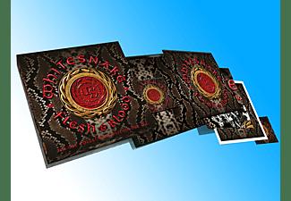 Whitesnake - Flesh & Blood (CD+DVD+2LP+Poster Box Set)  - (LP + Bonus-CD)