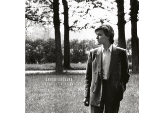 David Sylvian - Brilliant Trees Vinyle