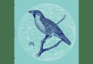 Genius Of Time - PEACE BIRD EP  - (Vinyl)