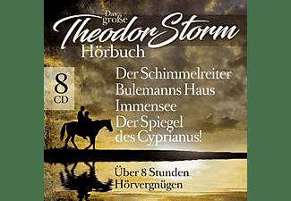 Schimmelreiter-Immensee-Uvm. - Das Große Theodor Storm Hörbuch  - (CD)