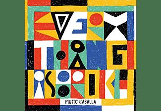 Muito Kaballa - EVERYTHING IS BROKE  - (Vinyl)