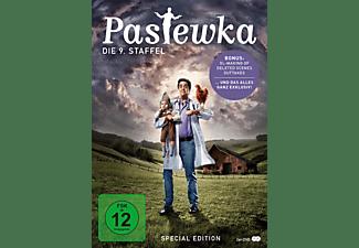 Pastewka - Staffel 9 DVD