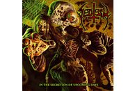 Sectesy - IN THE SECRETION OF UPCOMING DAYS [Vinyl]